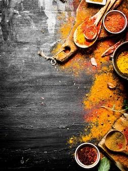 Spezie ed erbe indiane colorate.