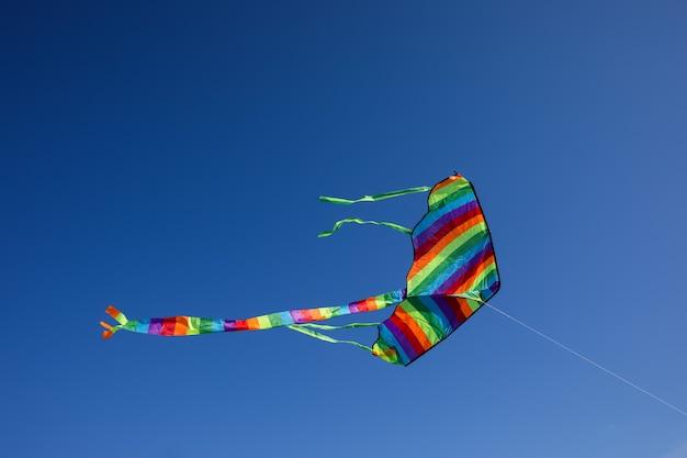Aquiloni colorati che volano nel cielo blu