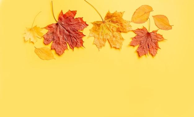Cornice di foglie colorate su sfondo giallo con spazio di copia.