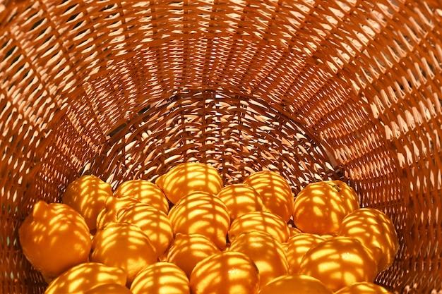 Limoni colorati frutta intera limonata di vimini albero di limone agrumi gialli vitamina c semicerchio horizonta