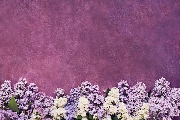 Confine di fiori lilla colorati. copia spazio, vista dall'alto.