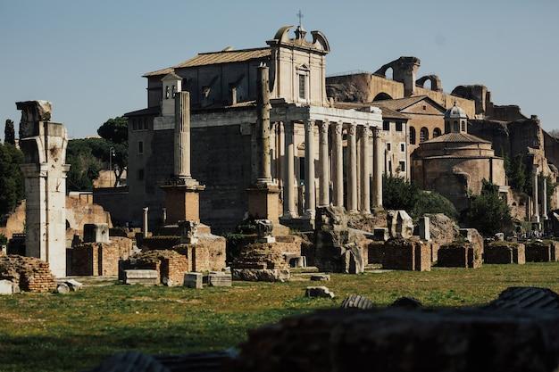 Colonna di foca e rovine del foro romano.