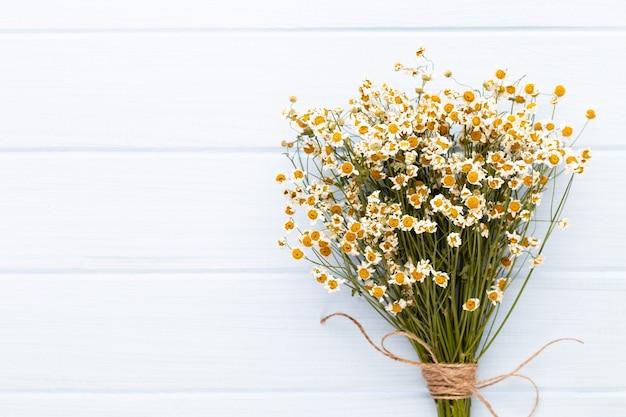 Composizione aromaterapia con cosmetici naturali e fiori di camomilla sulla luce.