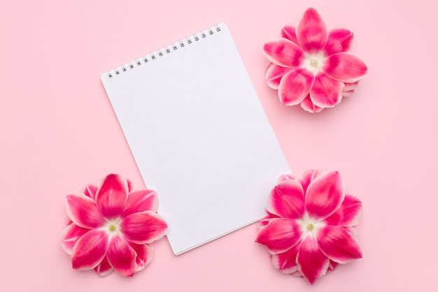 Composizione di carta bianca scrivania nota spirale decorare con fiori rosa su superficie rosa chiaro