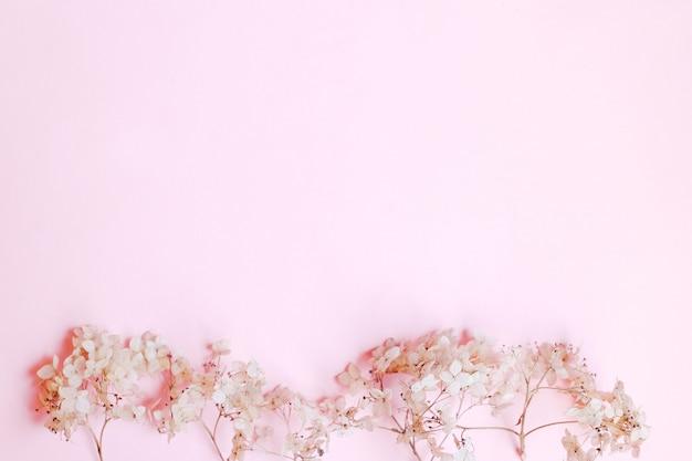 Composizione di fiori secchi sul tavolo rosa. copia spazio. vista dall'alto.
