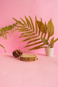 La composizione presenta prodotti estivi. legno tondo su fondo rosa con decorazione di foglie secche.