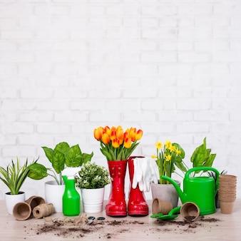 Composizione di attrezzi da giardinaggio piante in vaso e fiori primaverili sulla tavola di legno