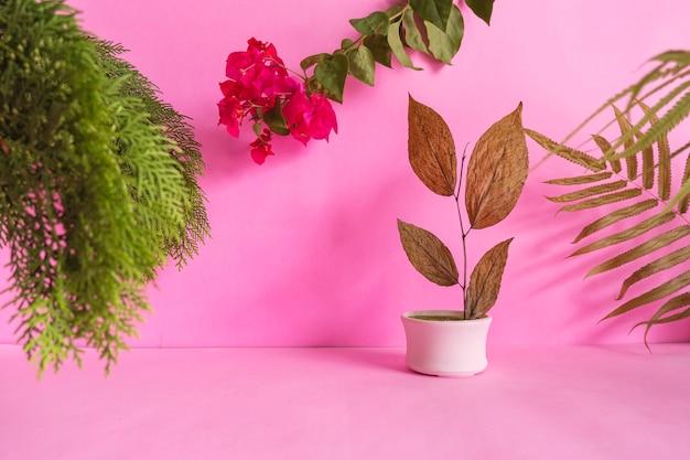 Concetto di idee di composizione con prodotti. sfondo rosa decorato con foglie secche, foglie verdi e fiori rossi