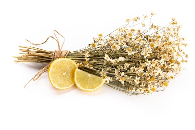 Composizione con fiori di camomilla e cosmetici fatti in casa, olio essenziale, sopa, su bianco, vista dall'alto.