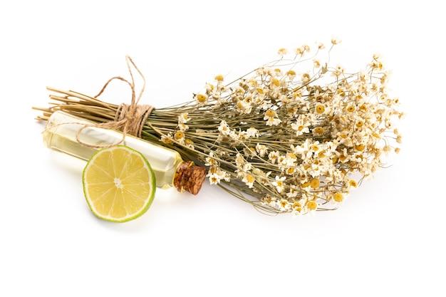 Composizione con fiori di camomilla e cosmetici fatti in casa isolati