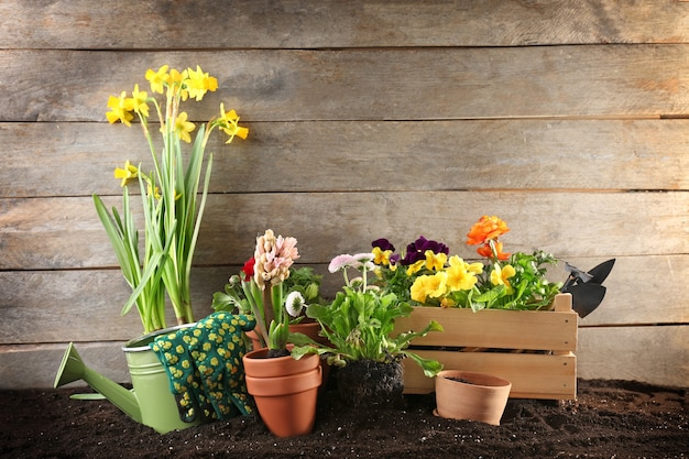 Composizione con fiori e attrezzi da giardinaggio sulla tavola di legno