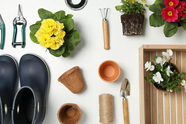 Composizione con gli strumenti e gli accessori di giardinaggio sulla tavola bianca, vista superiore