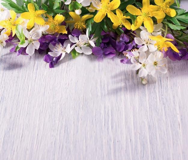 Composizione con violette selvatiche della foresta su una superficie di legno bianca con spazio vuoto per il testo. sfondo festivo di primavera.