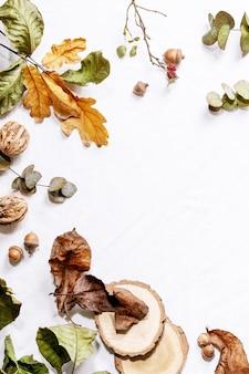 Composizione con foglie di acero gialle, rami di eucalipto e castagne su uno sfondo bianco. lay piatto, copia dello spazio
