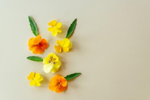 Composizione dei fiori o delle viole gialli ed arancio della pansé su fondo di carta beige con lo spazio della copia