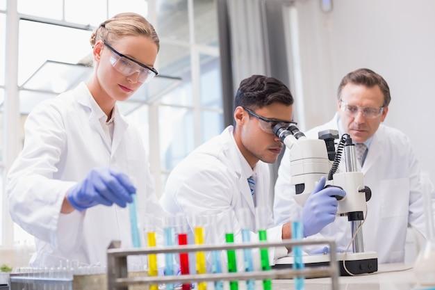 Scienziati concentrati che lavorano insieme