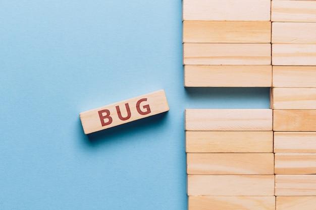 Il concetto di bug nel codice del programma e del sito web.