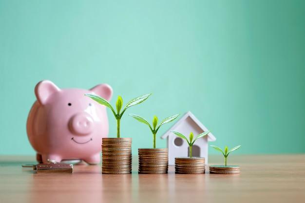 Concetto di sviluppo finanziario e crescita del business con alberi o piante che crescono su monete.