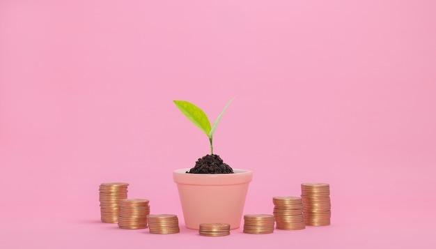 Concetto di crescita finanziaria investire in azioni pagare le tasse