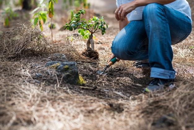 Concetto di giardinaggio e nessuna deforestazione le persone con una donna irriconoscibile si prendono cura di una nuova pianta