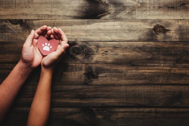 Concetto della giornata mondiale dell'animale e degli animali domestici. mani che tengono un cuore con i piedi dell'animale domestico.