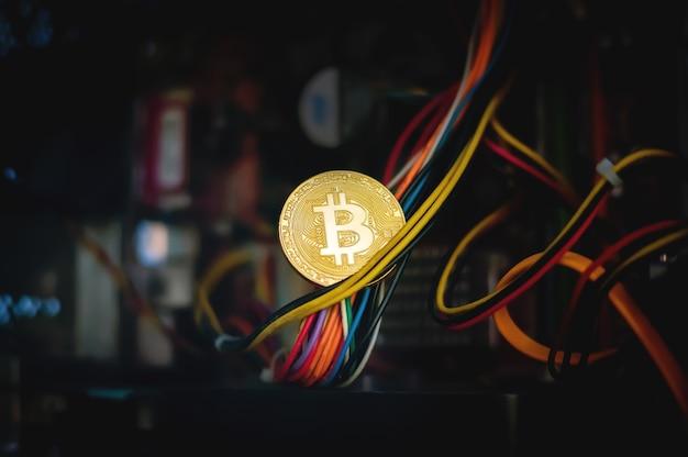 Immagine concettuale del mining di criptovalute. moneta d'oro nei cavi del computer sullo sfondo della fattoria per l'estrazione di bitcoin.
