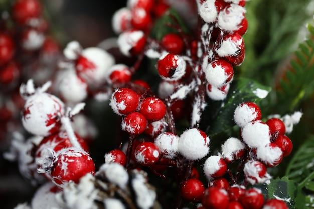 Coni, abete e ramoscello di sorbo nella neve per la decorazione domestica.
