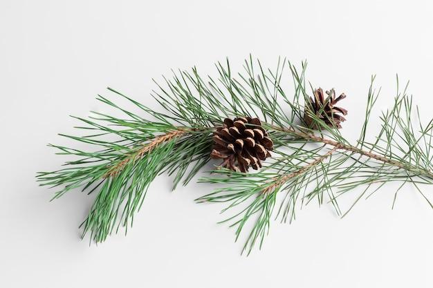 Coni e ramo di pino su uno sfondo bianco e grigio. concetto di celebrazione del nuovo anno con ombra naturale