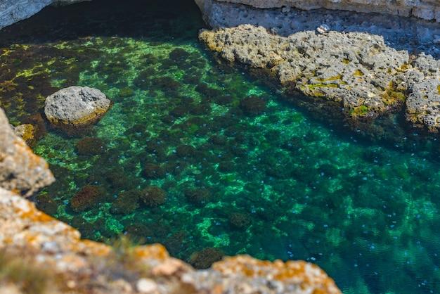 Congestione milioni di meduse galleggiano nella laguna marina a causa della penetrazione del flusso freddo. pericolo per le persone che nuotano.