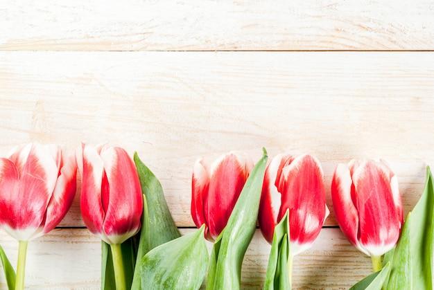 Per congratulazioni, biglietti di auguri. fiori freschi dei tulipani della molla, sulla vista superiore di legno bianca