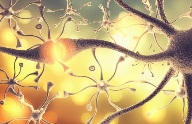 Coniugazione dei nervi neurali del cervello umano
