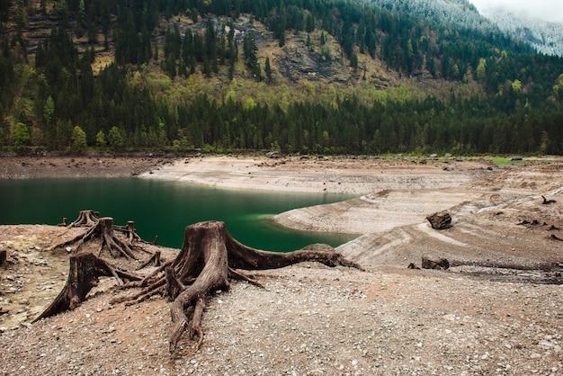 Conseguenze della deforestazione in montagna