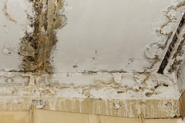 Conseguenze delle perdite dal tetto nella vecchia stanza dell'ufficio