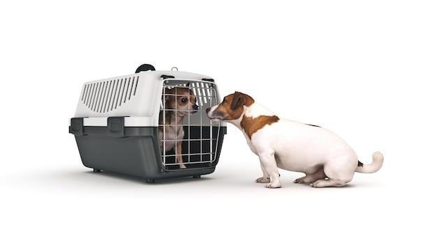 Il contenitore per il trasporto di animali con un piccolo cagnolino rendering 3d