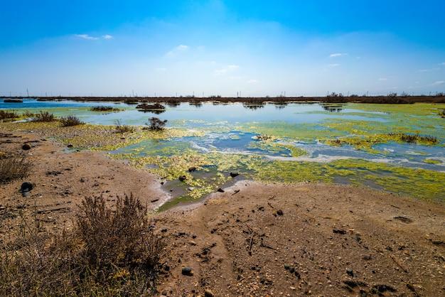 Lago essiccante contaminato