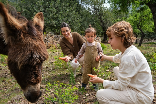 Contenta madre e bambini che danno da mangiare a un simpatico asino con le carote