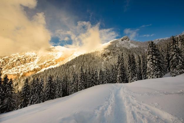 Contrasti di luci del tramonto nel paesaggio invernale dalla neve in montagna
