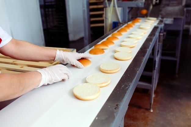 Nastro trasportatore in una panetteria con panini appena sfornati
