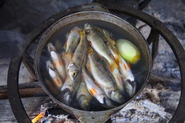 Cucinare la zuppa di pesce sul fuoco in un campeggio