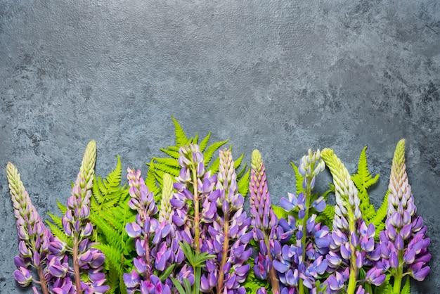 , copia spazio decorato con fiori di lupino su sfondo grigio, vista dall'alto