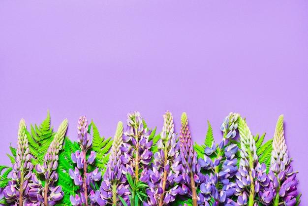 , copia spazio decorato con fiori di lupino su sfondo viola, vista dall'alto
