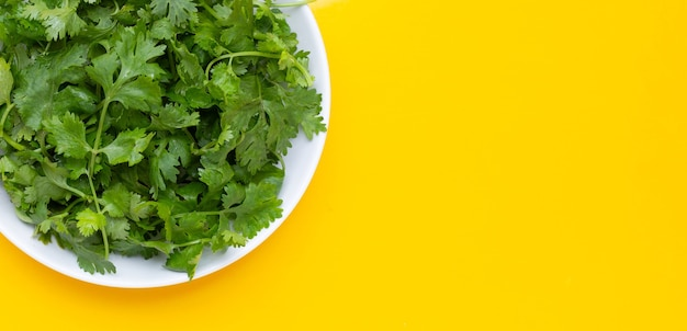 Foglie di coriandolo in piatto bianco su sfondo giallo.