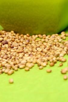 Semi di coriandolo e coriandolo in polvere nel contenitore verde su sfondo verde