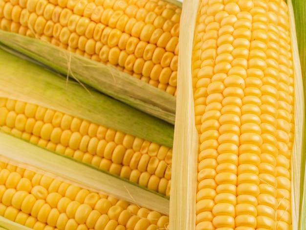 Pannocchie di mais sul tavolo.