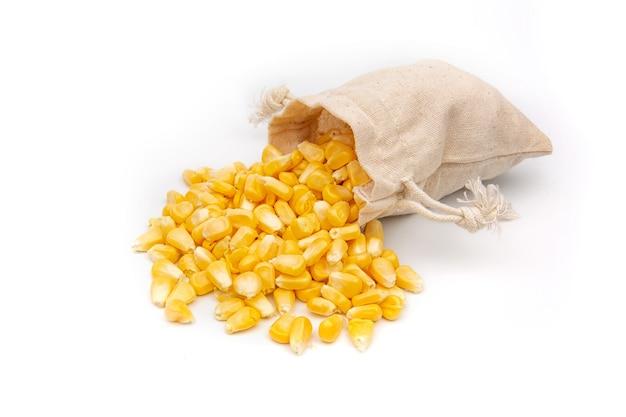 Semi di mais in un sacchetto di lino su uno sfondo bianco.