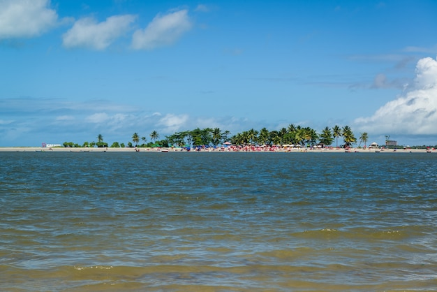 Isola di coroa do aviao, igarassu, vicino a recife, pernambuco, brasile, il 25 luglio 2021.