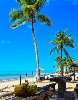 Spiaggia coroa vermelha a porto seguro, bahia - turismo e destinazioni nel nordest del brasile - attrazione turistica, guida di viaggio per il brasile