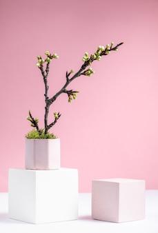 Sfondo cosmetico con forme geometriche e ramo di ciliegio in fiore su uno sfondo rosa tre podi cubici in mockup di sfondo astratto bianco e rosa per la dimostrazione di prodotti cosmetici