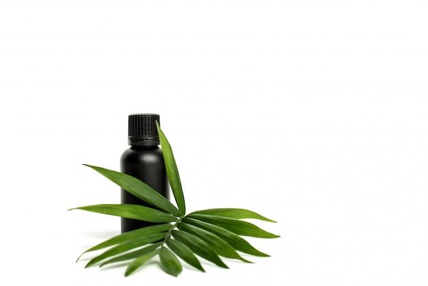 Bottiglia cosmetica. vaso di plastica nero per olio con foglia di palma verde.