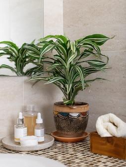 Contatore in bagno con cosmetici per la cura del viso, arrotoli un asciugamano pulito e una pianta d'appartamento in un vaso di fiori. immagine verticale